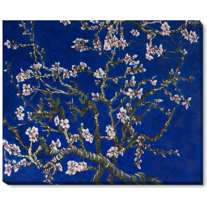 La Pastiche La Pastiche By Overstockart Branches Of An Almond Tree In Blossom Sapphire Blue By La Pastiche Originals Gallery Wrapped Canvas Oil Painting Reproduction Wall Art 22 In X 18 In In The