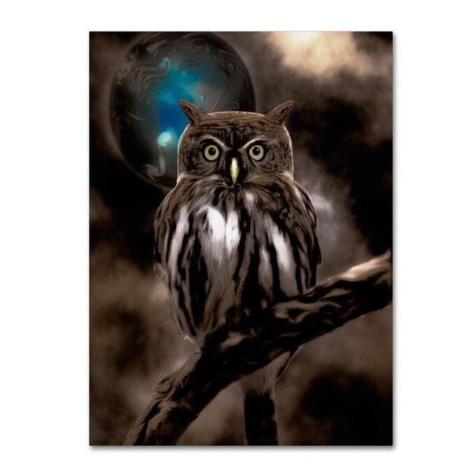 Trademark Fine Art Color Bakery Night Owl 18x24 Canvas Art In The Wall Art Department At Lowes Com