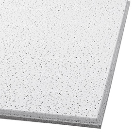 armstrong ceilings common 24 in x 24 in actual 23781 - White Ceiling Tiles