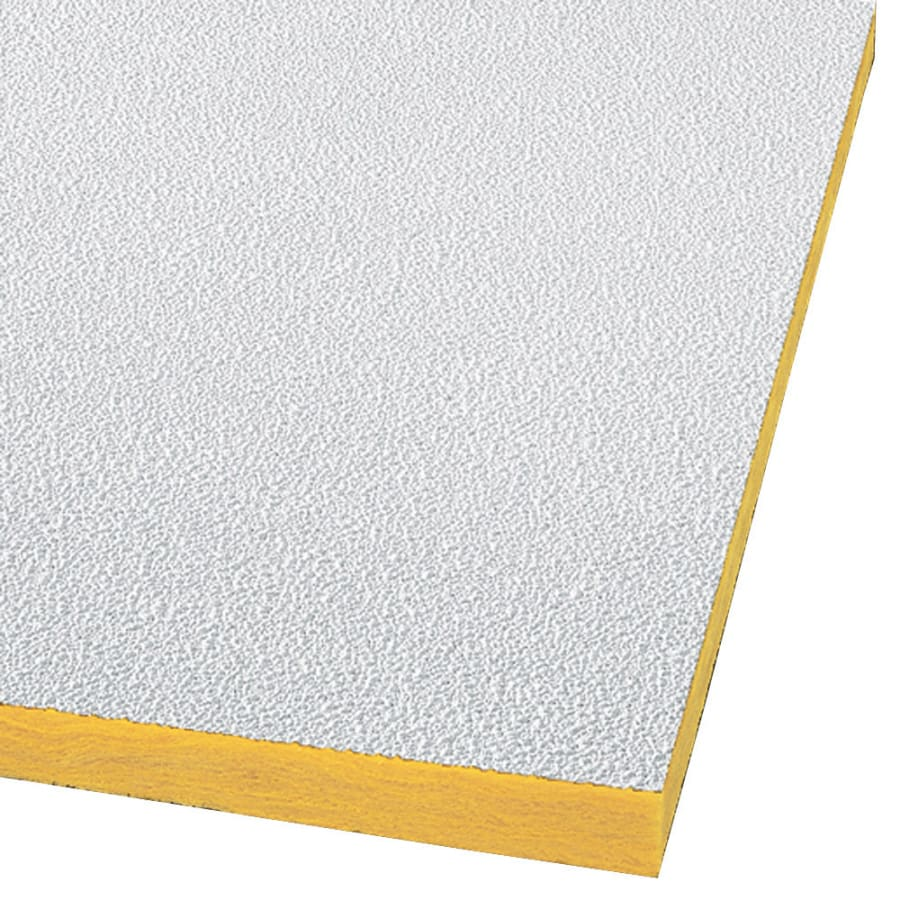 Armstrong Ceilings (Common: 48-in x 24-in; Actual: 47.719-in x 23.719-in) Pebble 16-Pack White Textured 15/16-in Drop Acoustic Panel Ceiling Tiles