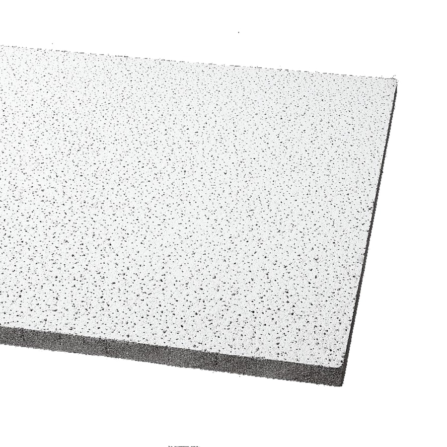 Armstrong Ceilings (Common: 48-in x 24-in; Actual: 47.719-in x 23.719-in) Fine Fissured School Zone 8-Pack White Fissured 15/16-in Drop Acoustic Panel Ceiling Tiles