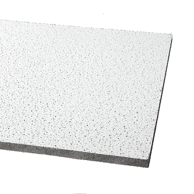 Armstrong Ceilings Common 48 In X 24 In Actual 47 719 In