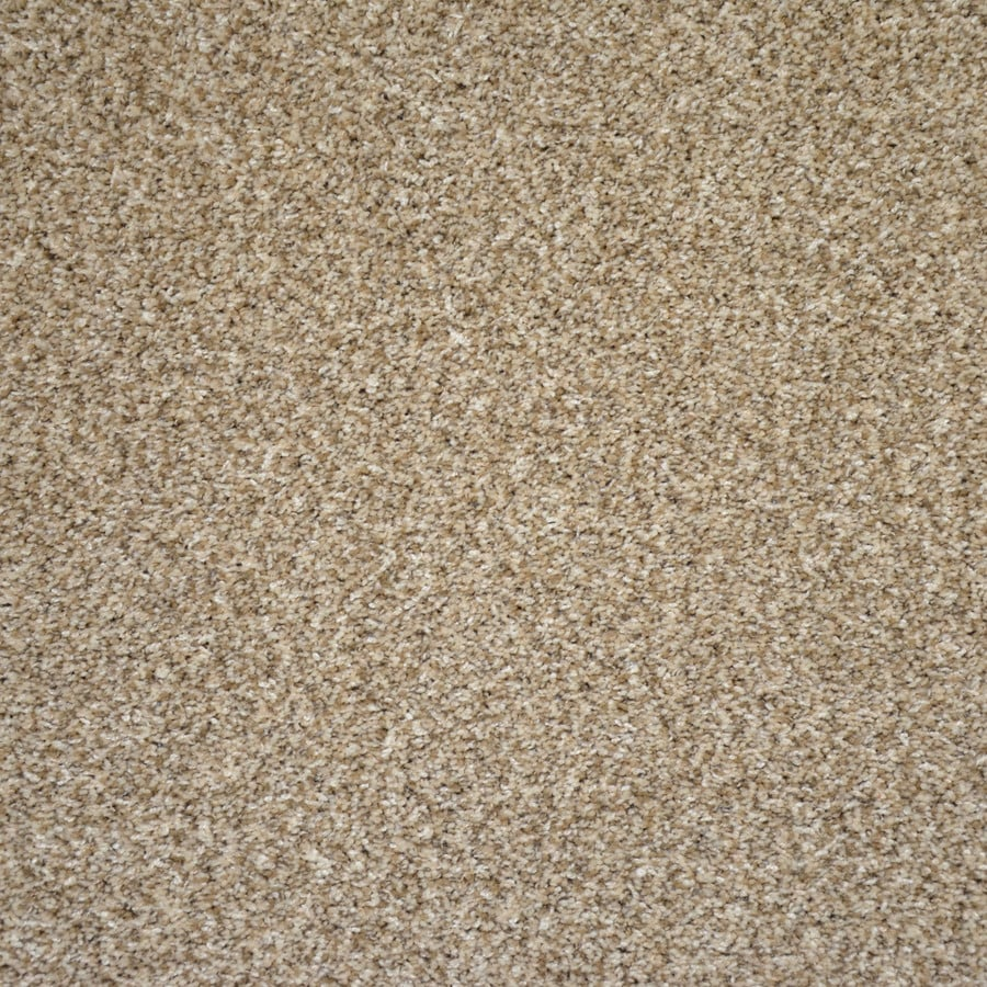 Shop Engineered Floors Stock Carpet 12-ft W x Cut-to-Length Sand Dunes Textured Interior Carpet ...
