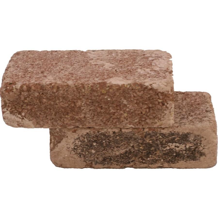 Shop Brick Fire Brick At Lowes Com