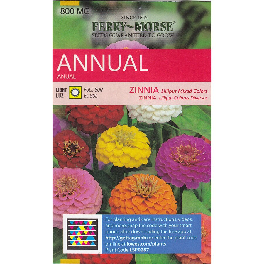 Shop Ferry Morse Zinnia Lilliput Mixed Colors Flower Seed Packet At