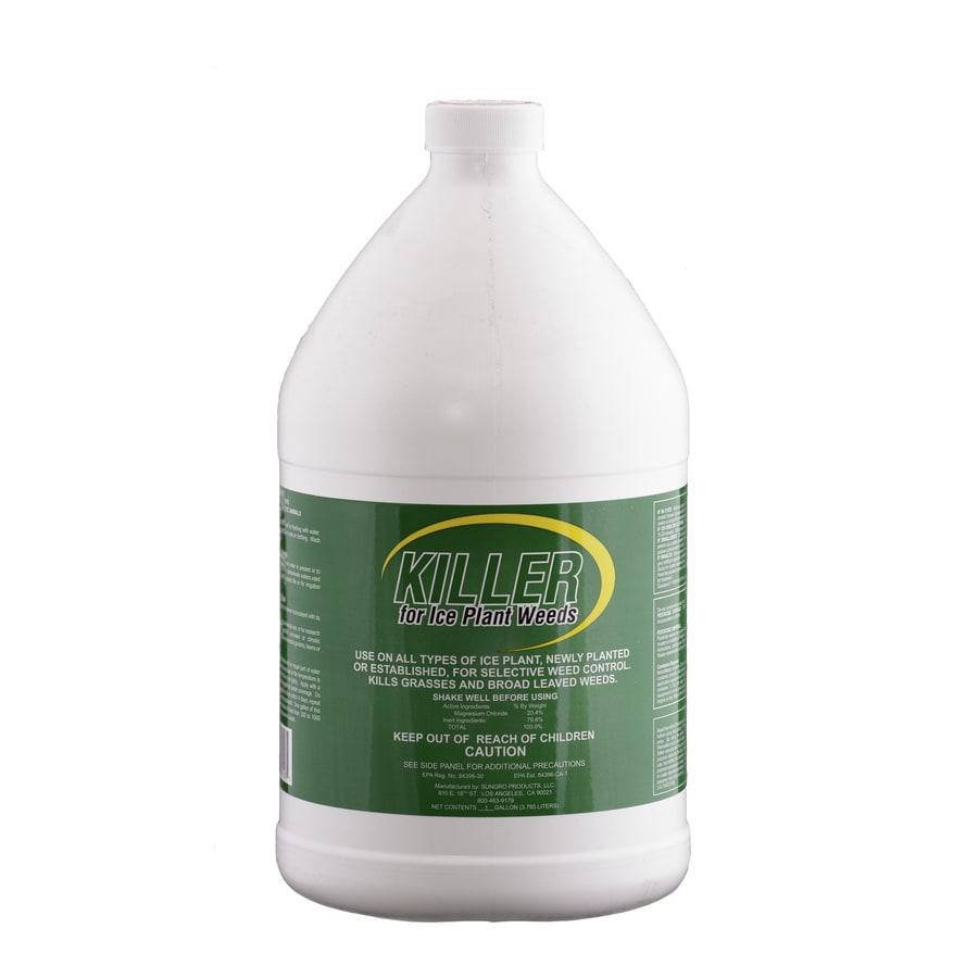 Liquinox 1-Gallon Ice Plant Weed Killer