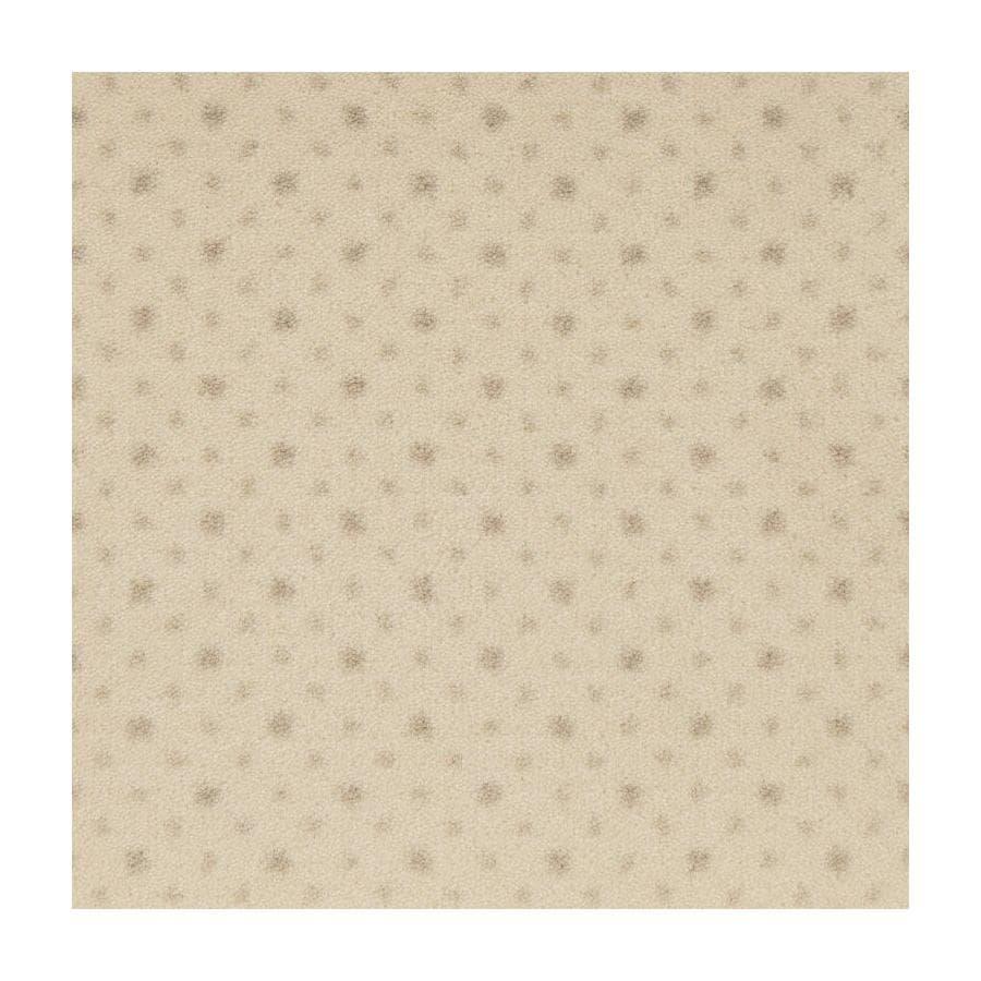 STAINMASTER Active Family to The Point Angora Plush Interior Carpet