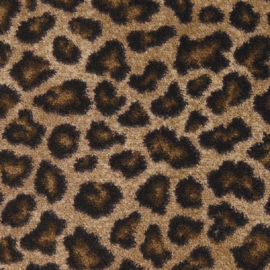 STAINMASTER Leopard Carpet Sample