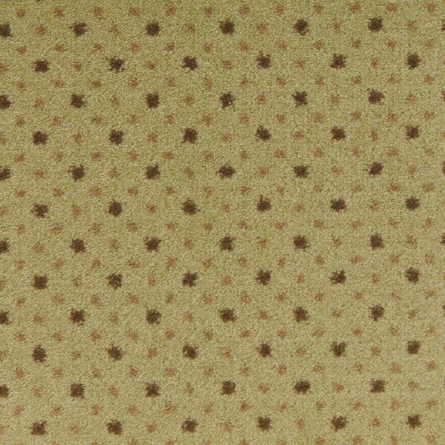 STAINMASTER Fresh Herb Nylon Fashion Forward Carpet Sample