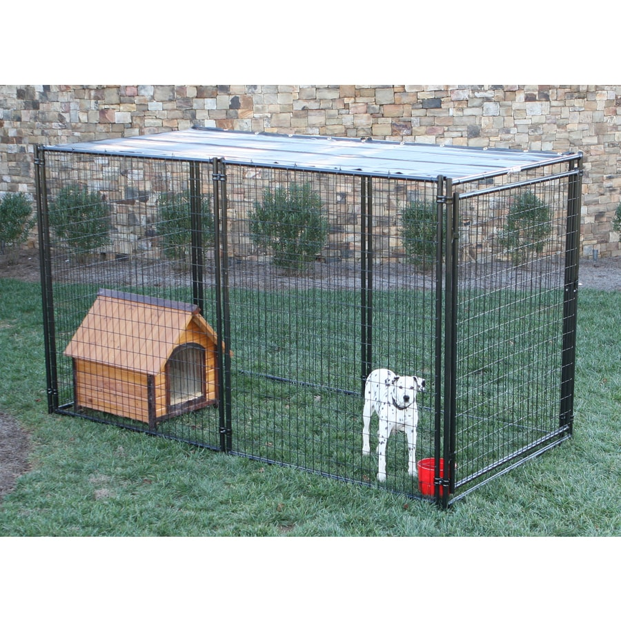 shop behlen country 10 ft x 5 ft x 6 ft outdoor dog kennel With outside dog kennels lowes