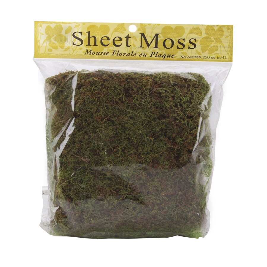 250-cu in Sheet Moss