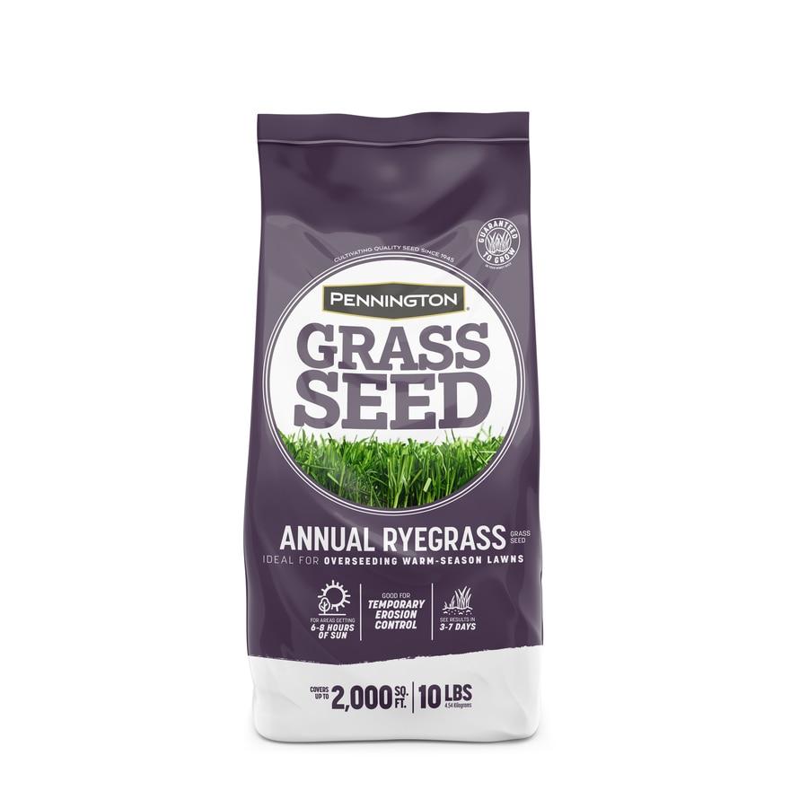 Pennington 10-lb Annual Ryegrass Seed