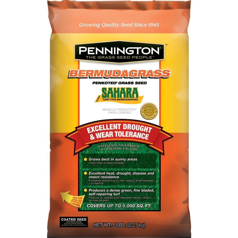 Pennington Sahara 5-lb Bermuda Grass Seed