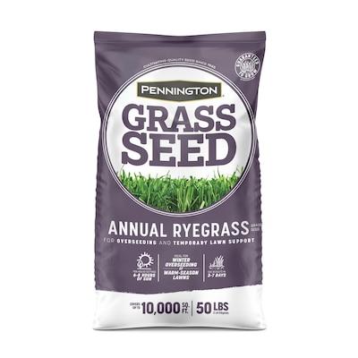 Pennington Grass Seed at Lowes com
