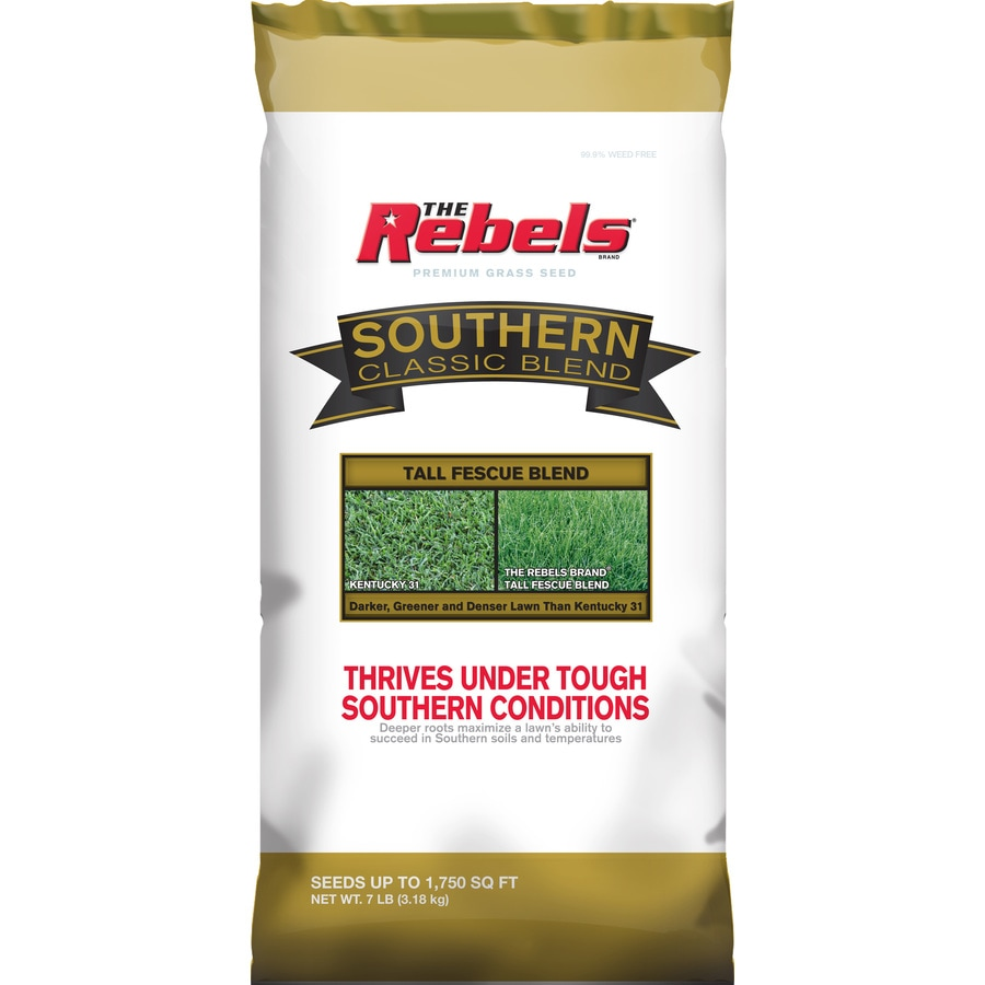 Rebel Southern Classic 7-lb Tall Fescue Grass Seed