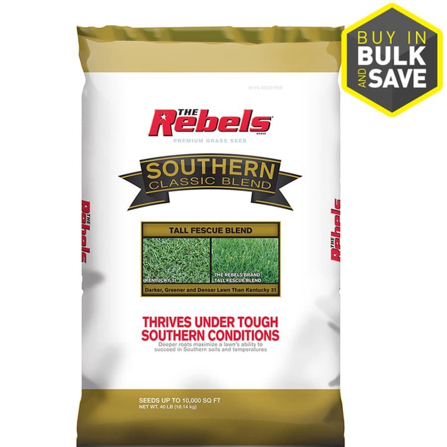Rebel Southern Classic 40-lb Grass Seed