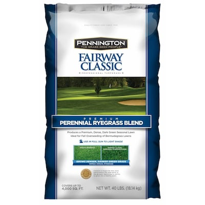 Fabulous Pennington Fairway Classic 40 Lb Perennial Ryegrass Seed At Home Interior And Landscaping Dextoversignezvosmurscom