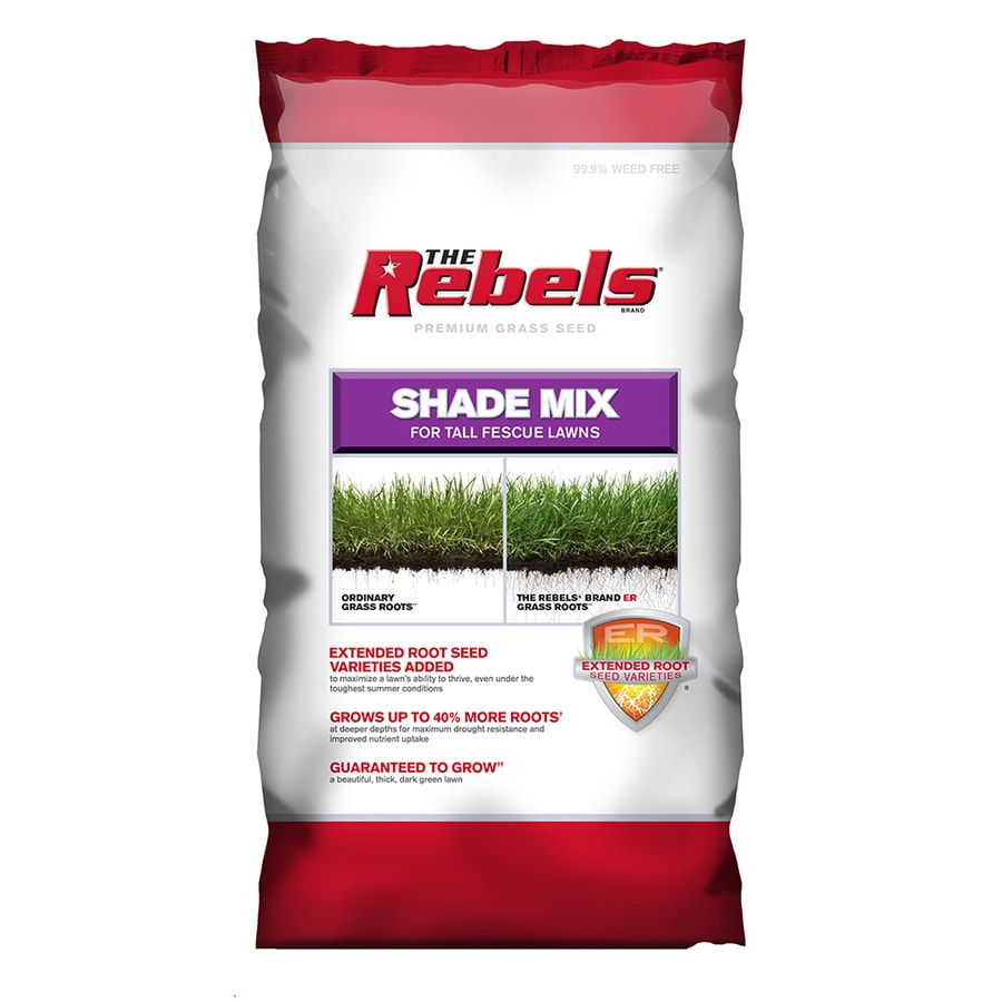 Rebel Premium 20-lb Dense Shade Grass Seed