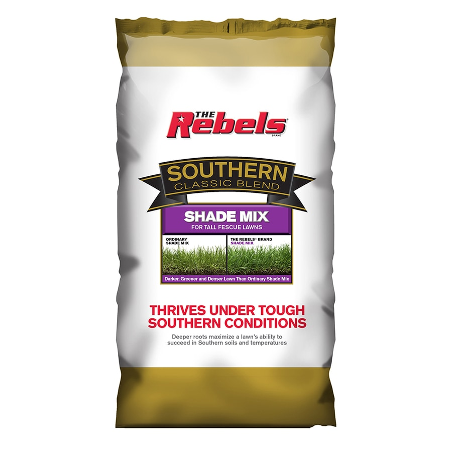 Rebel Southern Classic 3-lb Dense Shade Grass Seed