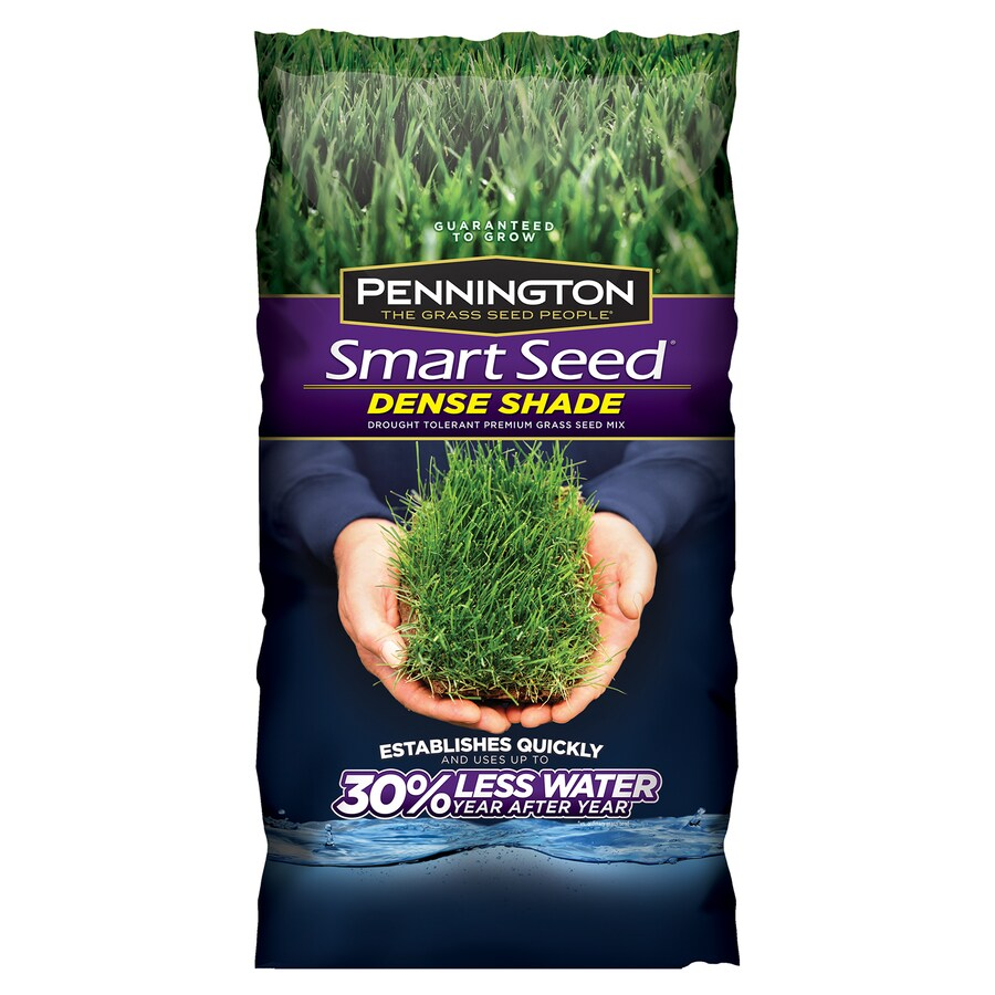 Pennington Smart Seed 3-lb Dense Shade Grass Seed