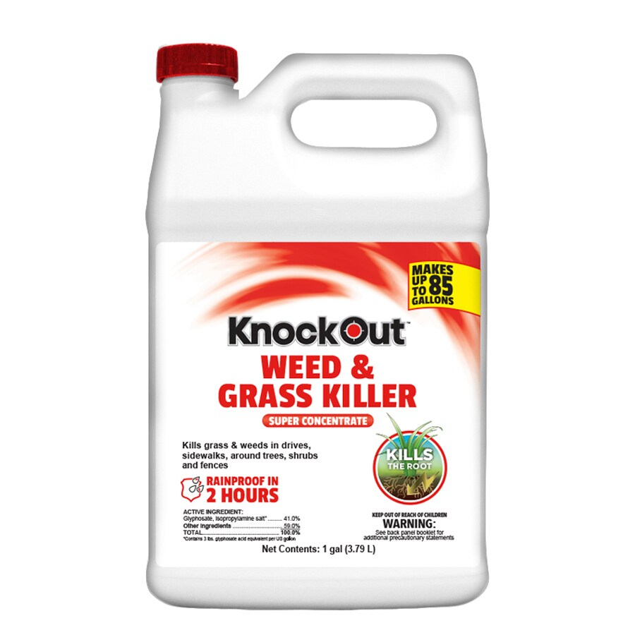 Knockout Concentrate 1-Gallon Weed and Grass Killer
