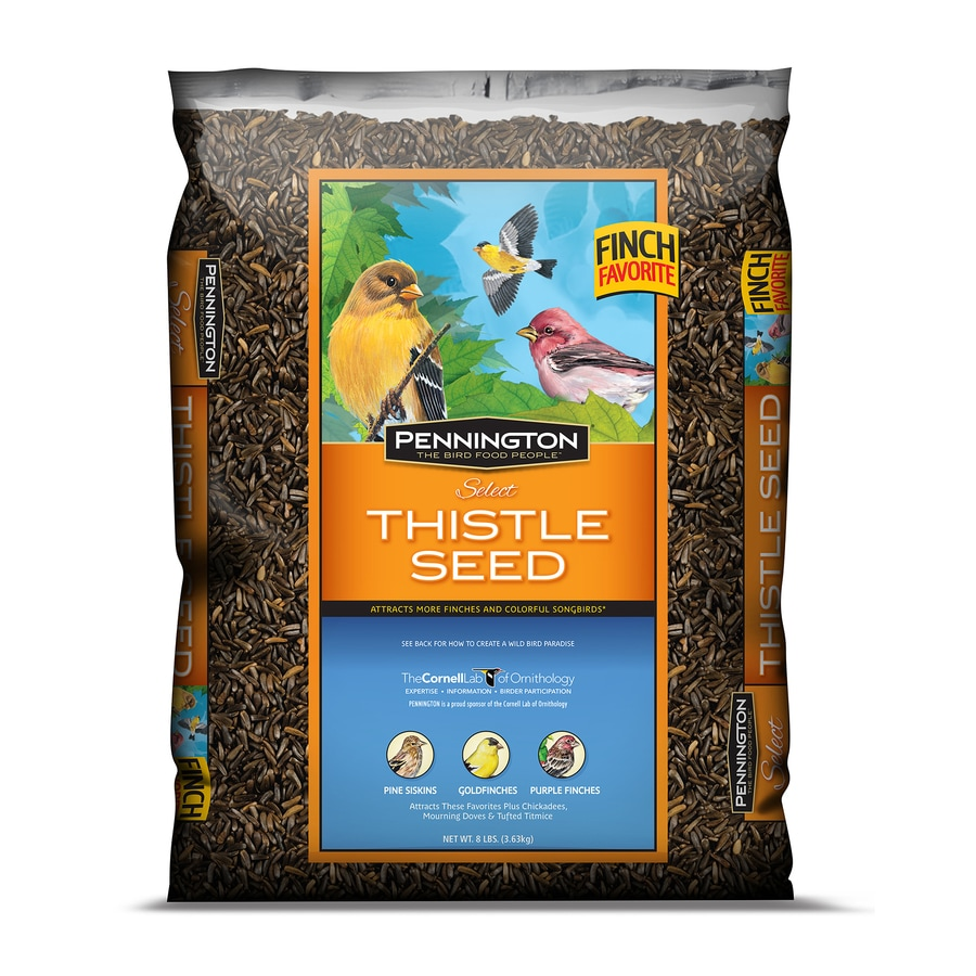Pennington 8-lb Bird Food Bag (Thistle Seed)
