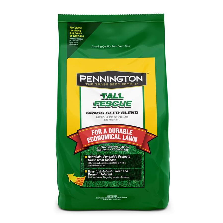 Pennington 10-lb Tall Fescue Seed