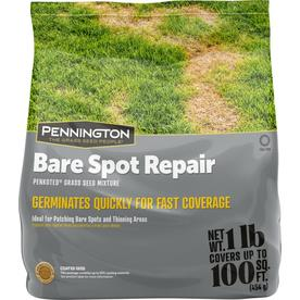 Scotts 3 75-lb St  Augustine Lawn Repair Mix at Lowes com