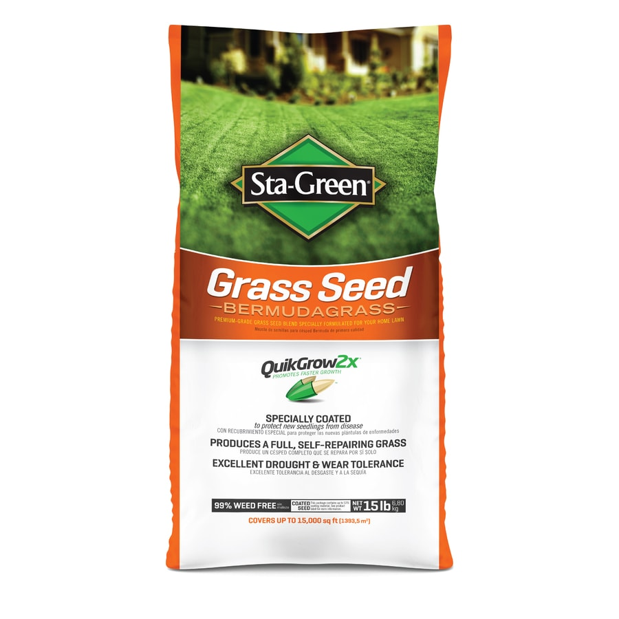 Gr Seed At Lowes