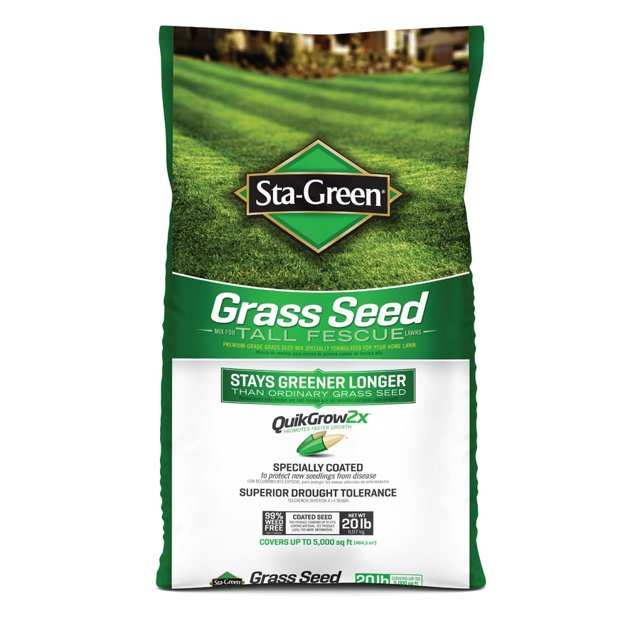 Sta-Green 20-lb Tall Fescue Grass Seed