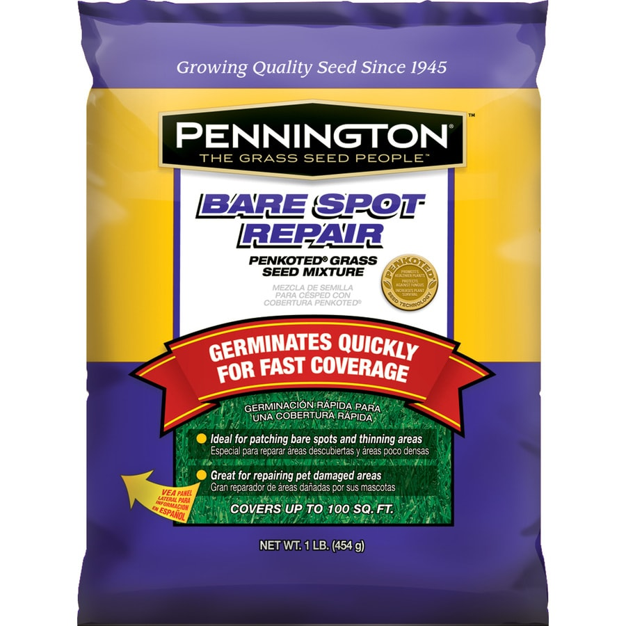 Pennington 1-lbs Sun and Shade Fescue Grass Seed Mixture