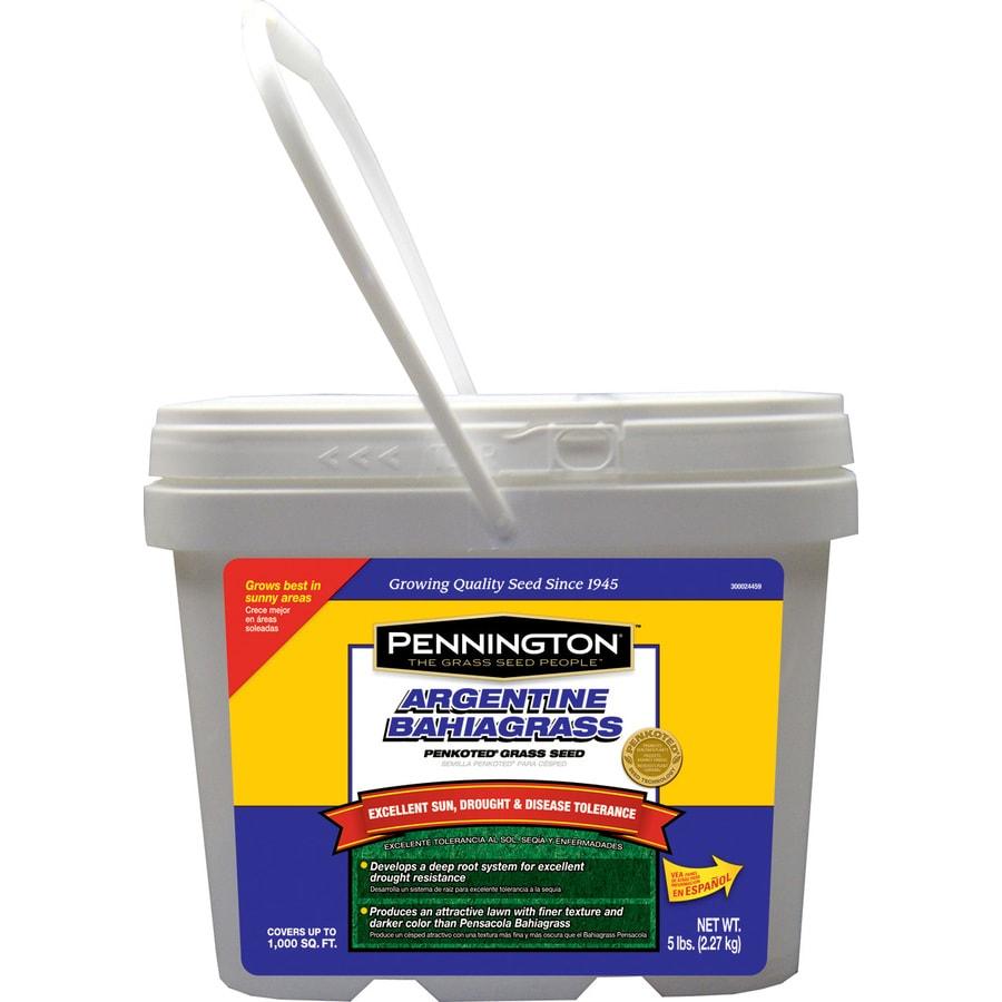 Pennington 5-lb Bahia Grass Seed