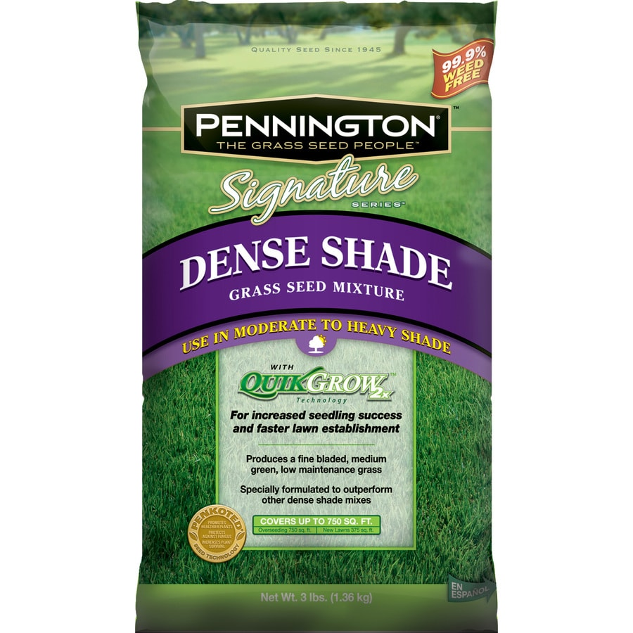 Pennington Signature 3 lbs Shade Fescue Grass Seed Mixture