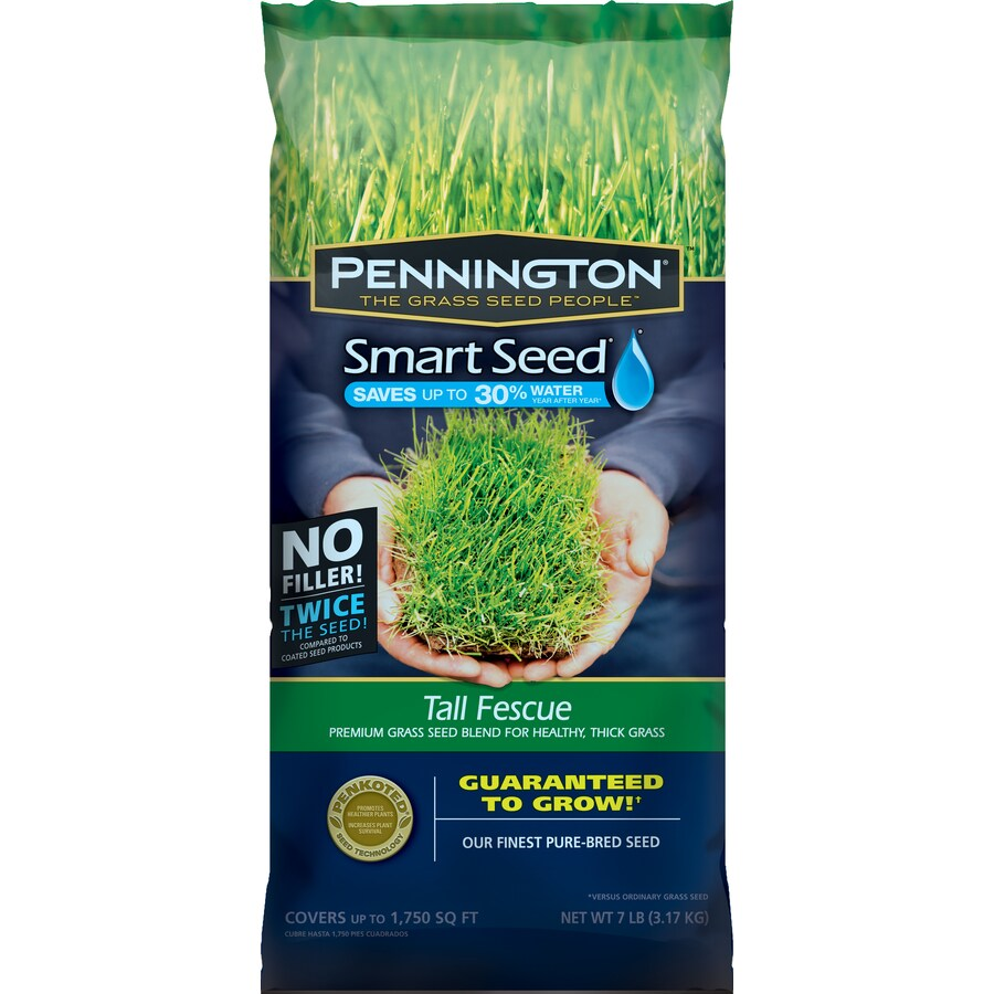 Pennington Smart Seed 7-lb Tall Fescue Seed