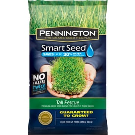 Shop Grass Amp Grass Seed At Lowes Com