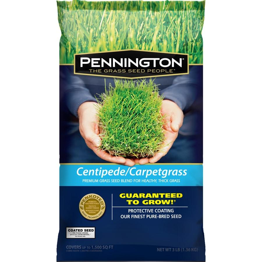 Pennington Premium 3 Lb Carpetgrass Seed