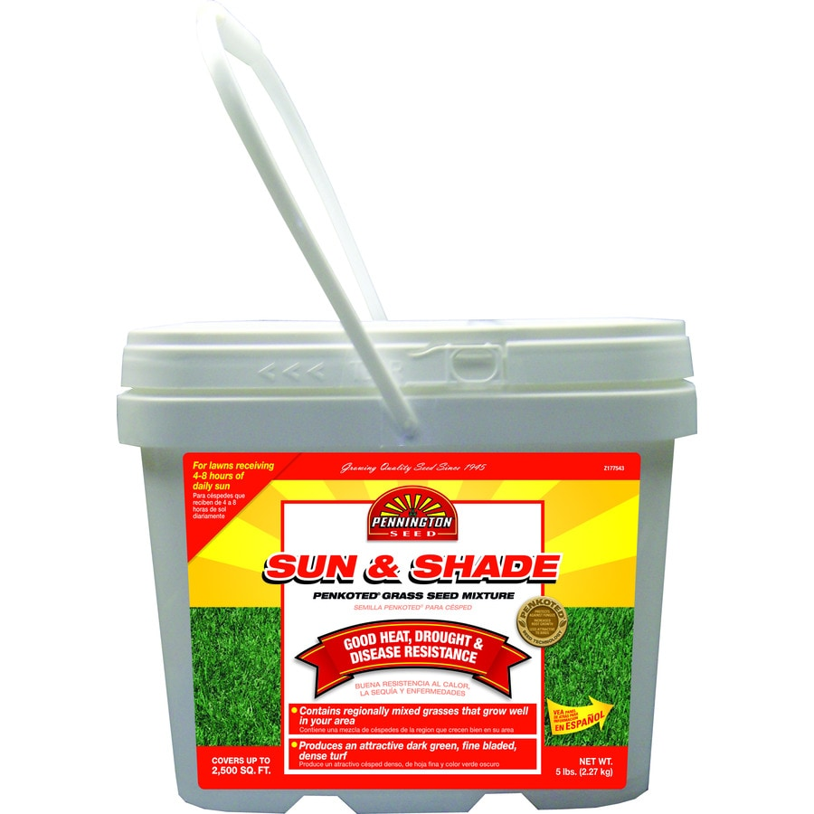 Pennington 5-lb Sun and Shade Grass Seed