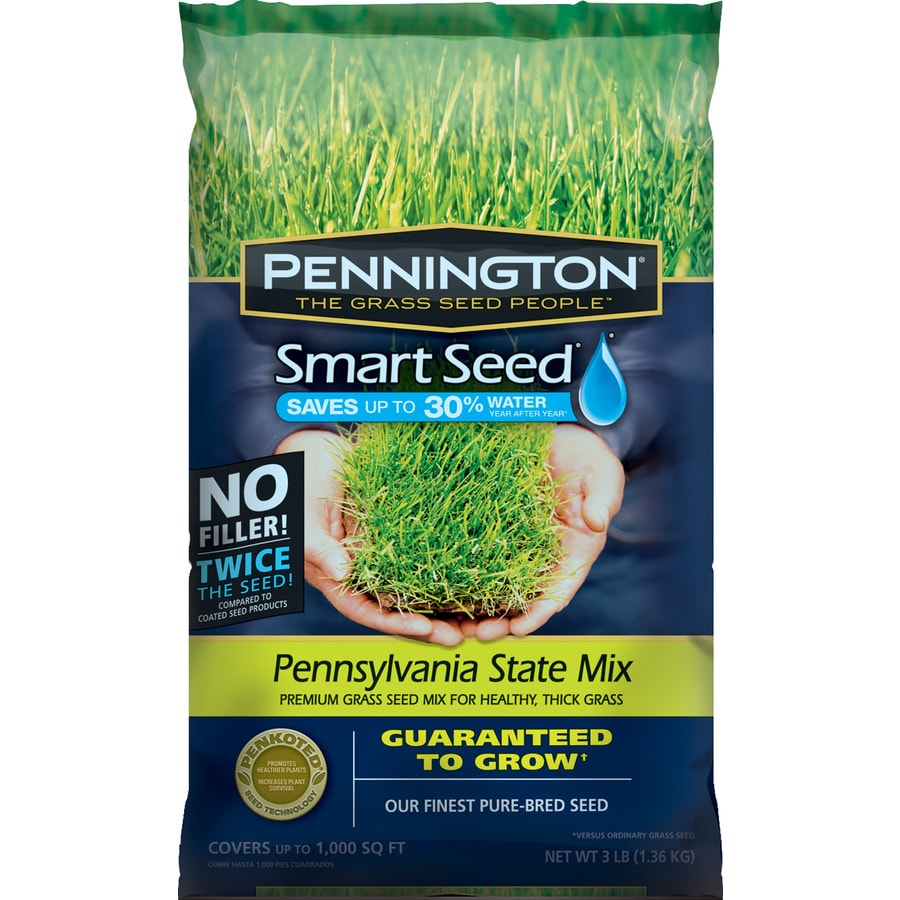 Pennington Smart Seed Pennsylvania State 3-lb Sun and Shade Grass Seed