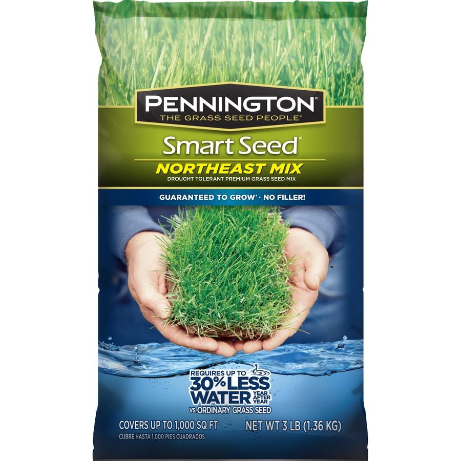 Pennington Smart Seed Northeast Mix 3-lb  Sun & Shade Seed