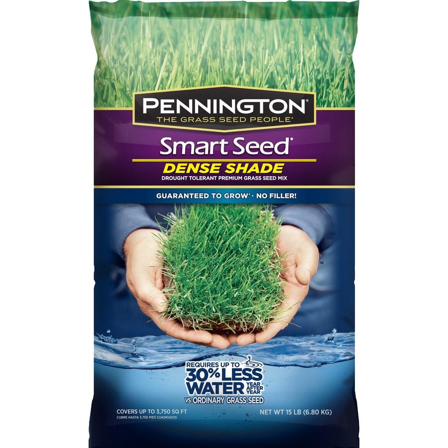 Pennington Smart Seed 15-lb  Dense Shade Seed