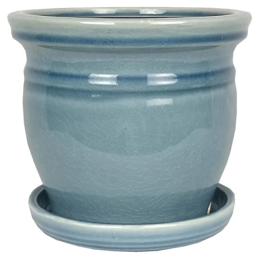 Pennington 5.91-in x 5.51-in Blue Ceramic Nantucket Planter