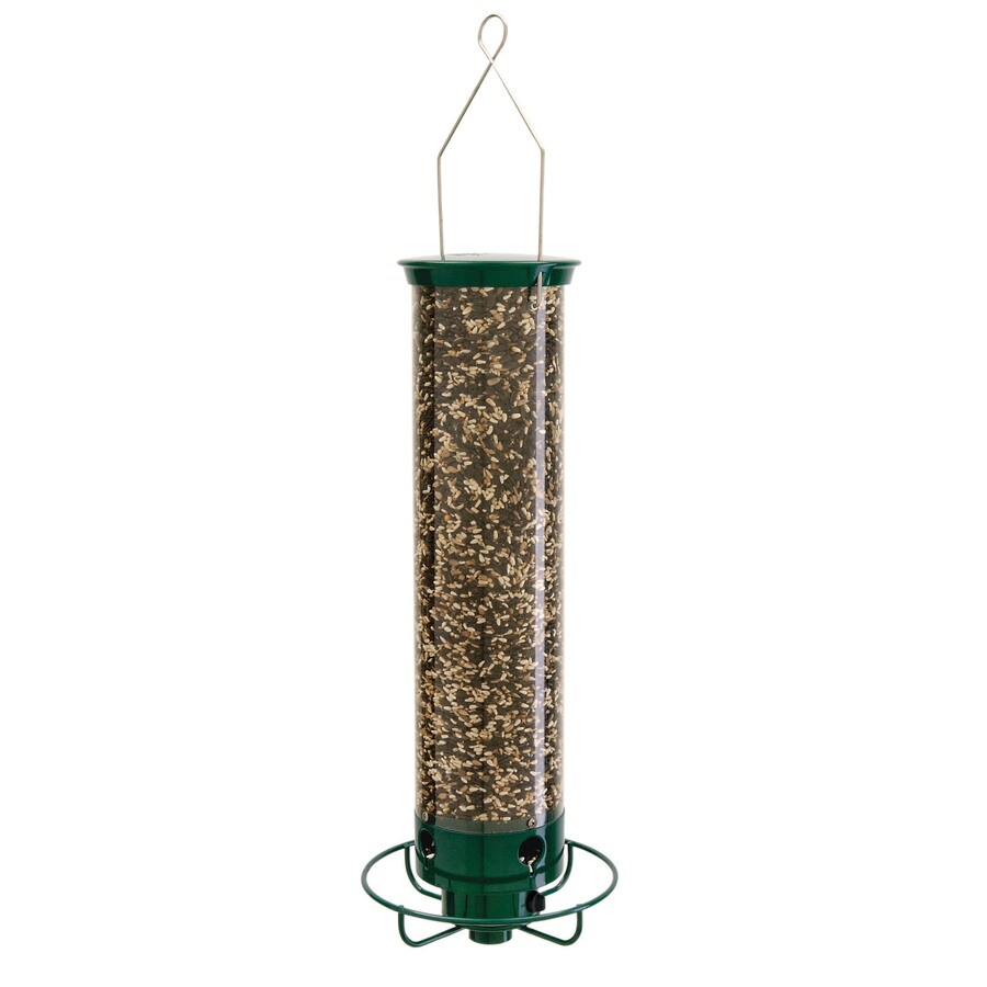 Droll Yankees Metal Squirrel-Resistant Tube Bird Feeder