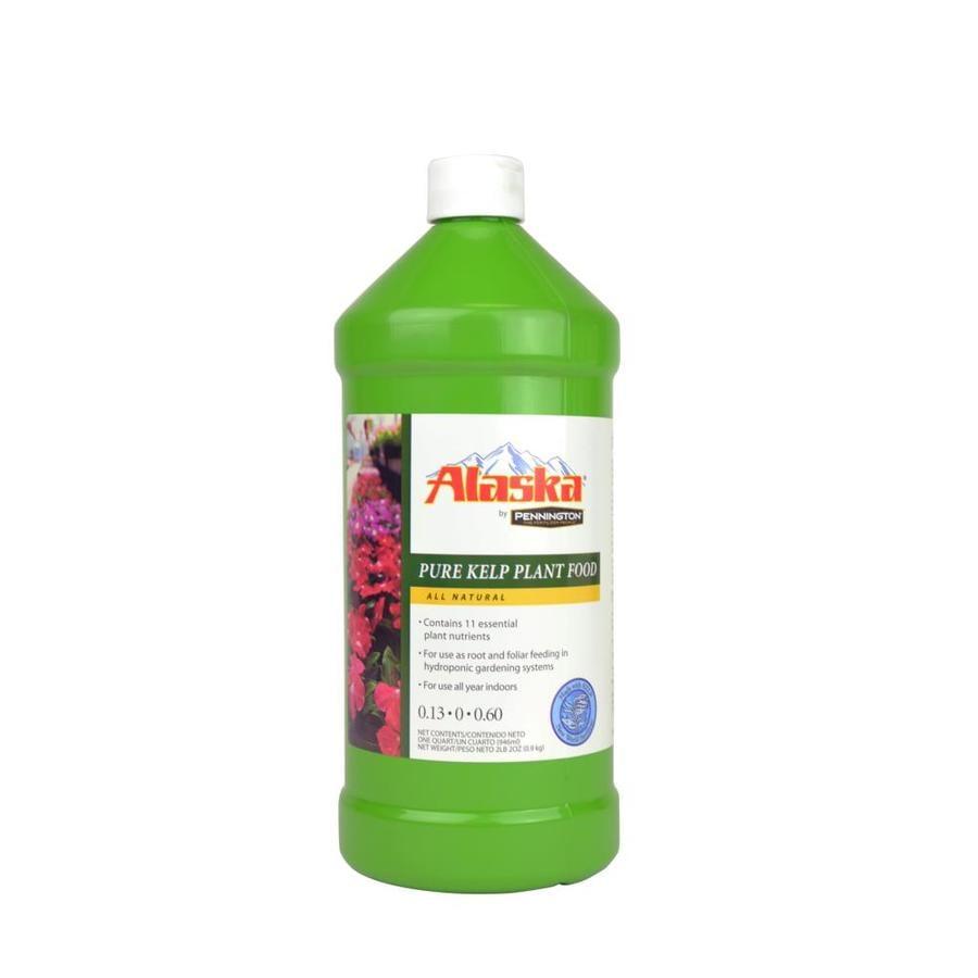 Alaska Pure Kelp 32-oz Organic/Natural Indoor Plant Food (0.13-0-0.6)