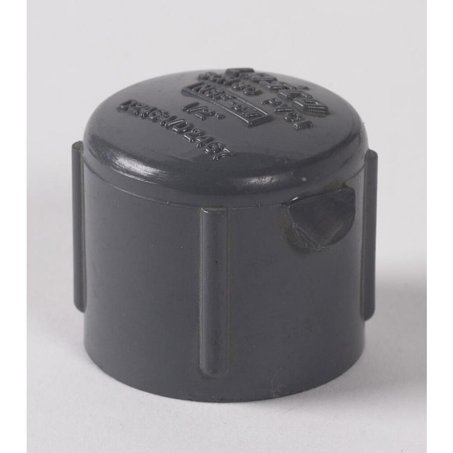 LASCO 1/2-in dia PVC Sch 80 Cap
