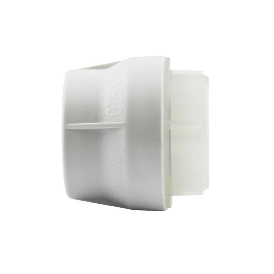 LASCO 3/4-in Dia PVC Sch 40 Cap