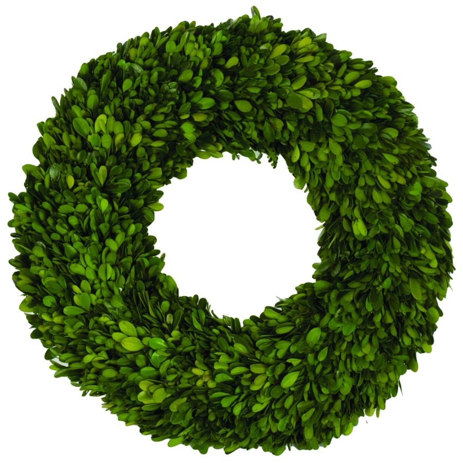 18-in Green Boxwood