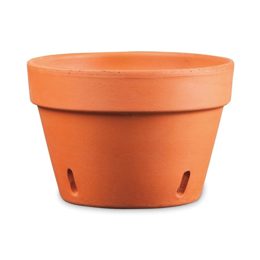 Shop x pot at for 6 ceramic flower pots