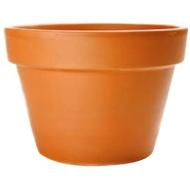 8 5 In W X 5 5 In H Azalea Terracotta Clay Planter In The Pots Planters Department At Lowes Com
