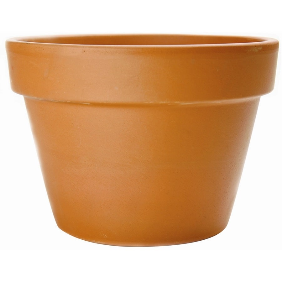 Pennington 10.629-in x 7.401-in Pot