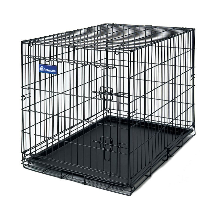 Shop petmate large wire training kennel at lowescom for Petmate large dog kennel